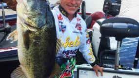 Blog 2.11.16 One Big Fish