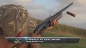 Blog Dove Hunting