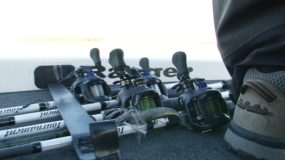 Aracnid Reel and Tournament ZX